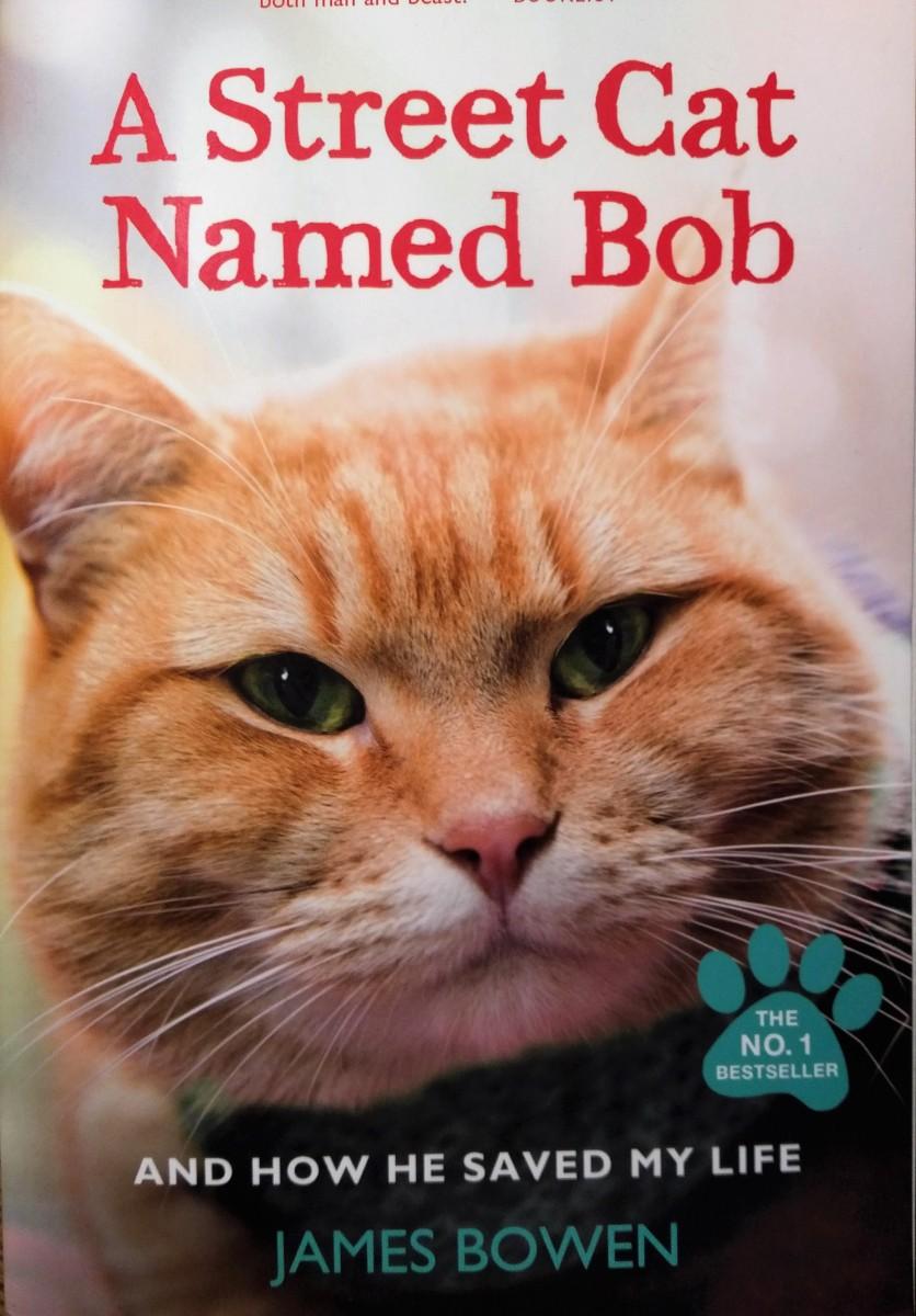 Street Cat Named Bob Book