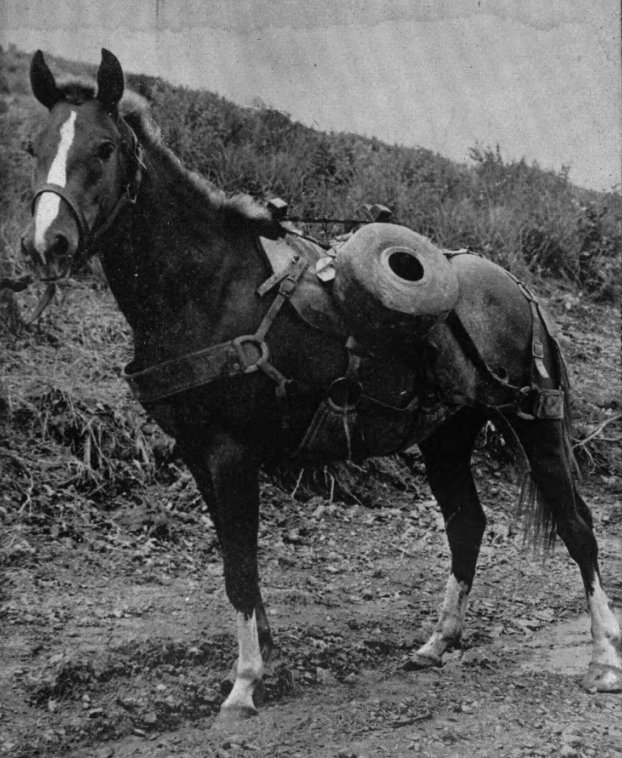 sgt_reckless_with_communication_wire