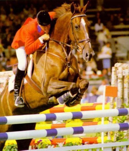 The Greatest Horse In The World Horseaddict