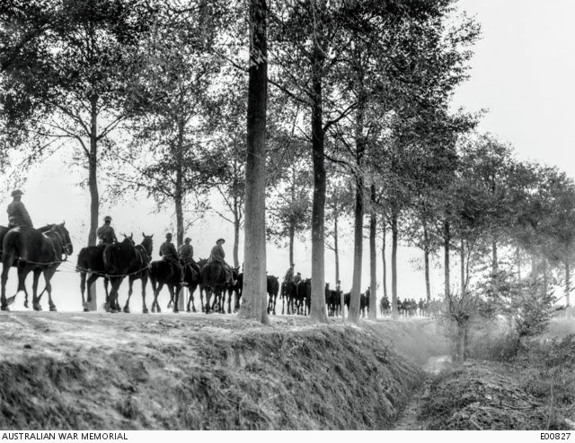 Artillery horses moving along the tree lined road between Poperhinghe and Ypres4110946