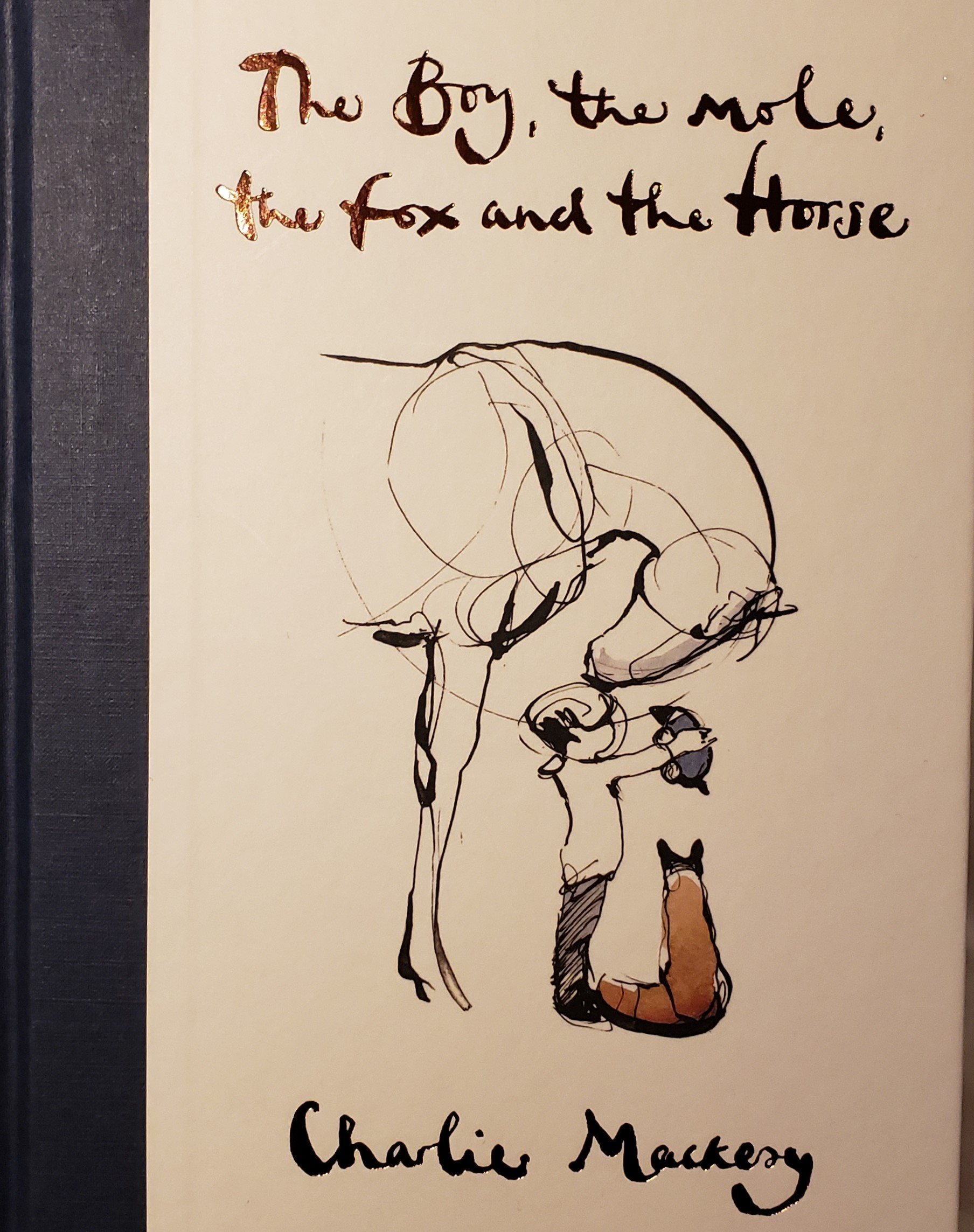 Book Review The Boy The Mole The Fox And The Horse By Charlie Mackesy Horseaddict